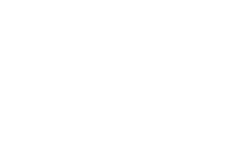Renaissance Travel logo